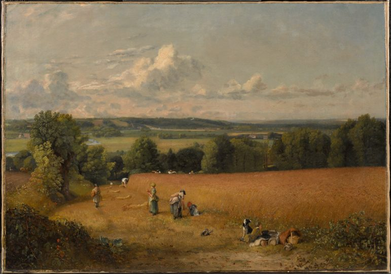 John Constable's The Wheat Field (1816) depicts an August harvest in the English county of Suffolk. Photo courtesy of The Clark.