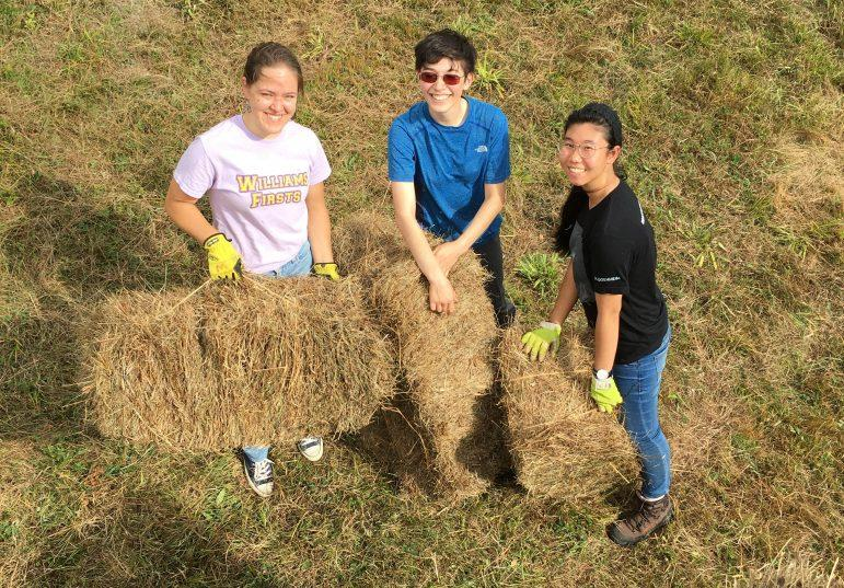 Around 200 students have volunteered at the organic-practicing Peace Valley Farm in Williamstown since the early 1990s. Photo courtesy of Marco Vallejos.
