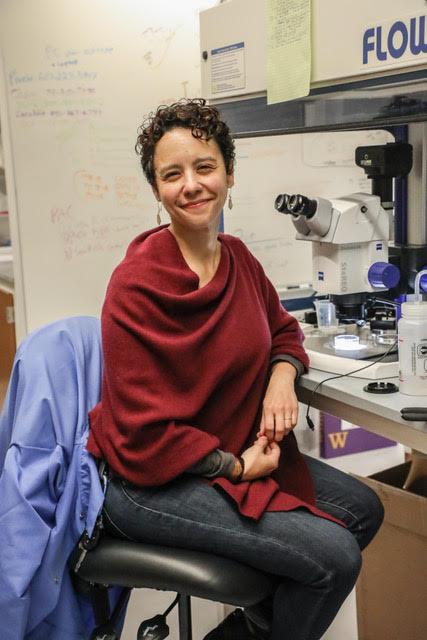 Spotlight on Research: Geosciences professor  Phoebe Cohen investigates beginning of life on Earth