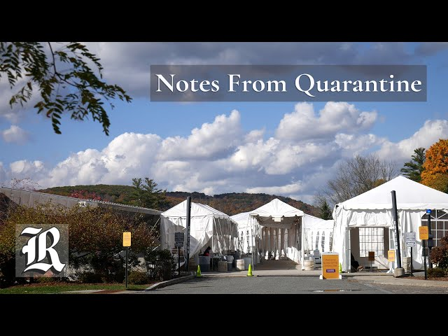 Notes From Quarantine