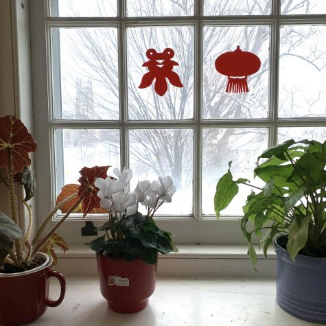 Miranda Wang '21 decorated her windows with red paper cutouts for Lunar New Year. (Photo courtesy of Miranda Wang.)