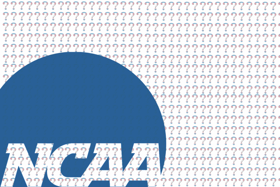 Student-athletes discuss trans inclusion as runners sign letter urging NCAA action