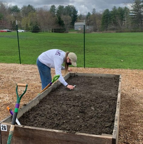 Rosemary Kehoe '24 works on her plot. (Photo courtesy of Justyn Friedler.)